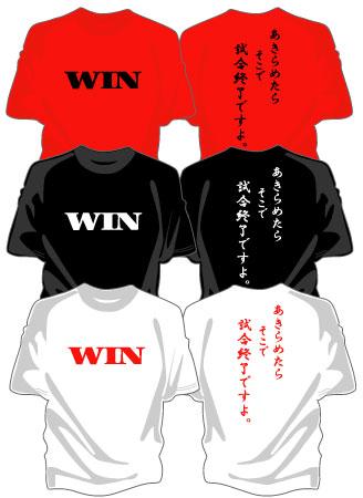 sd_win02.jpg