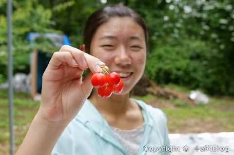 cherry0906c_eip.jpg