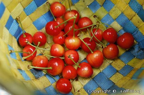 cherry0906f_eip.jpg