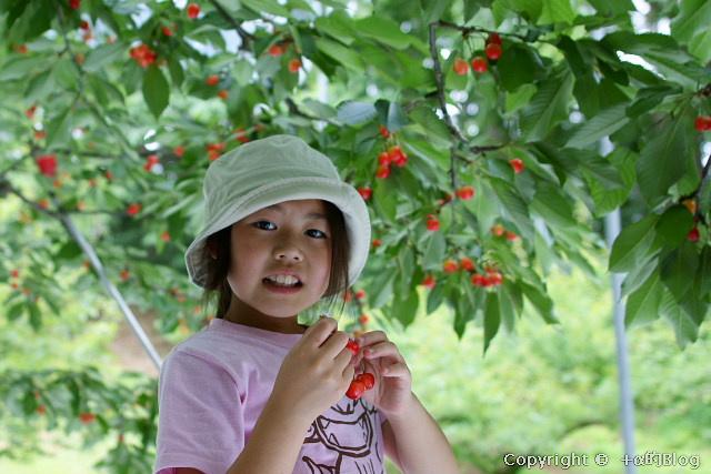 cherry0906gg_eip.jpg