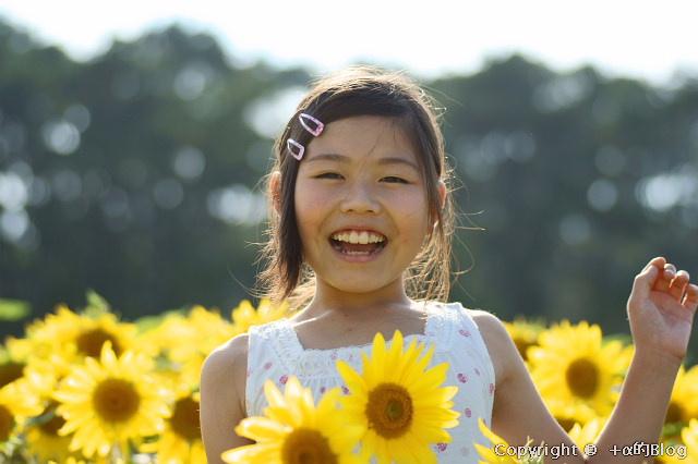 himawari0909e_eip.jpg
