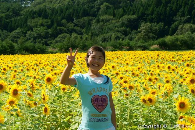 himawari09h_eip.jpg