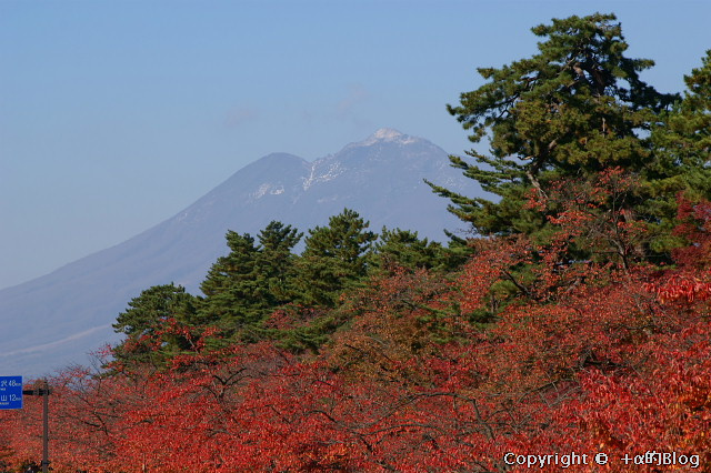 hirosaki091108_eip.jpg