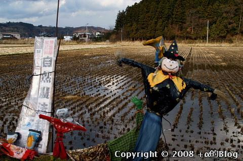 nagawa0811a_eip.jpg