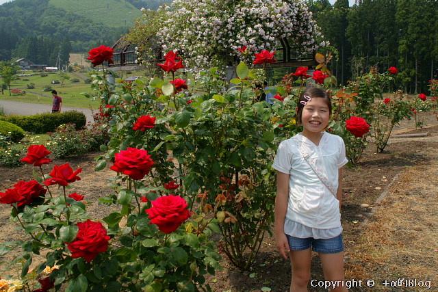 rose0920_eip.jpg