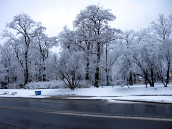 ポーランド 雪景色