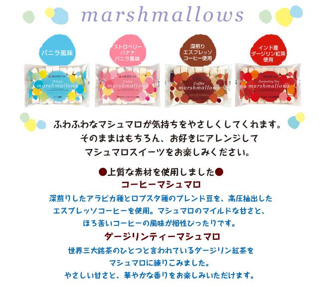 ms_new01.jpg