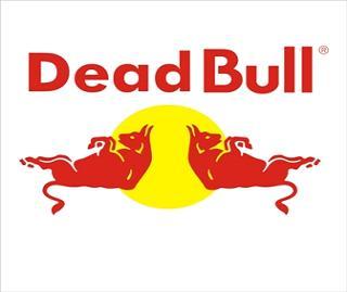 Dead Bull?!