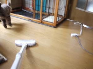027_convert_20110604164624.jpg