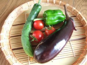 001とれたて野菜