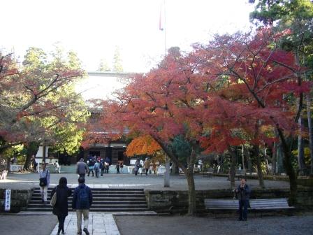 201206紅葉