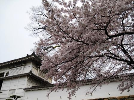210405姫路城2