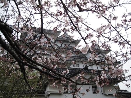 210405姫路城4