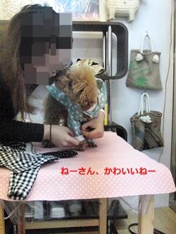 20111217-846.jpg