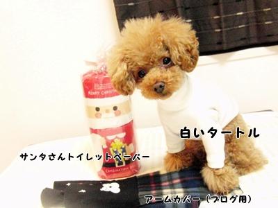 20111220-011.jpg