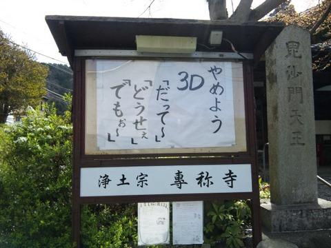 SH3E0010_20100410181107.jpg
