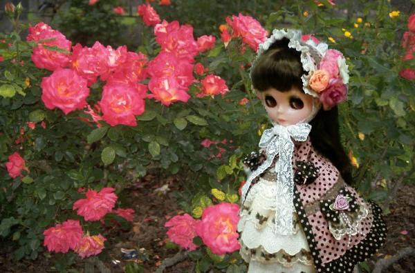 薔薇とブライス