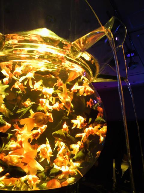 金魚鉢黄色