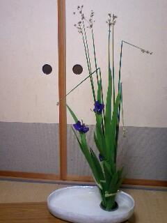 moblog_675fbb5a.jpg