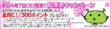 げん玉桜満開キャンペーン