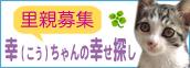 kou-chan0928.jpg