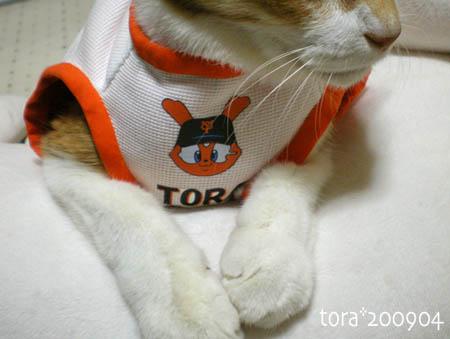 tora09-04-16s.jpg