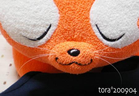 tora09-04-21s.jpg