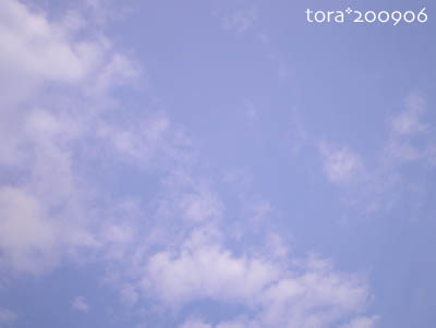 tora09-06-94.jpg