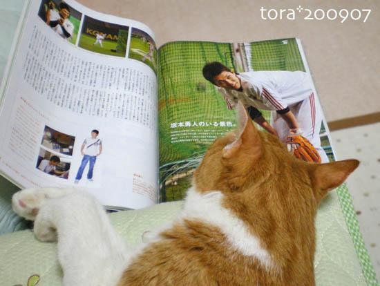 tora09-07-49.jpg