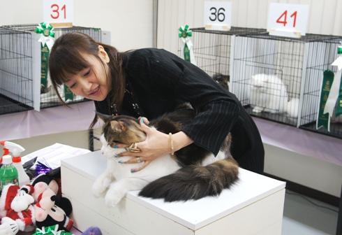4)スキ!好き!サニーくん