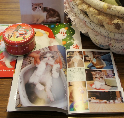 3)コスケちゃん入浴お写真!