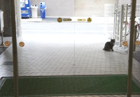 8)入口に
