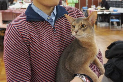 17)ふぁるパパさんとしぇるくん