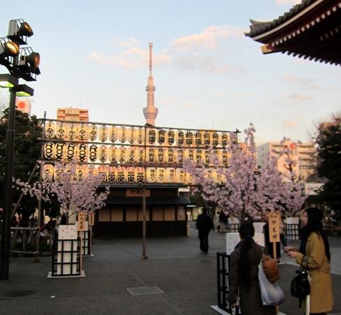 22)浅草寺から見るスカイツリー