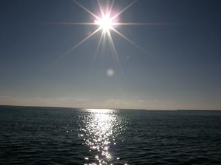 sun081129.jpg