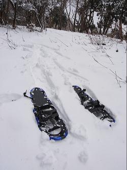 snow shuu