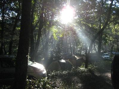 平湯キャンプ朝の陽射し