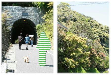 鎌倉散歩♪