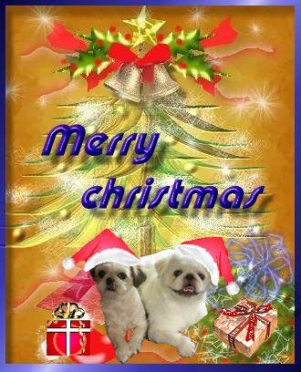 09クリスマス