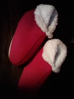 サンタさんのくつ!