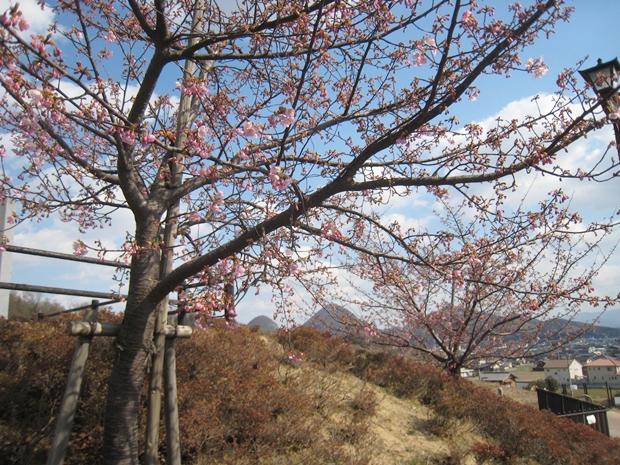 如意輪寺公園