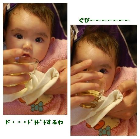DSC_0383-horz.jpg