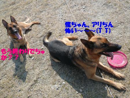 譁ー縺励>+001_convert_20110312004403