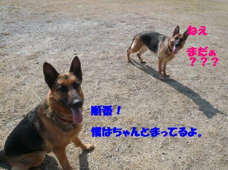 譁ー縺励>+002_convert_20110312004038