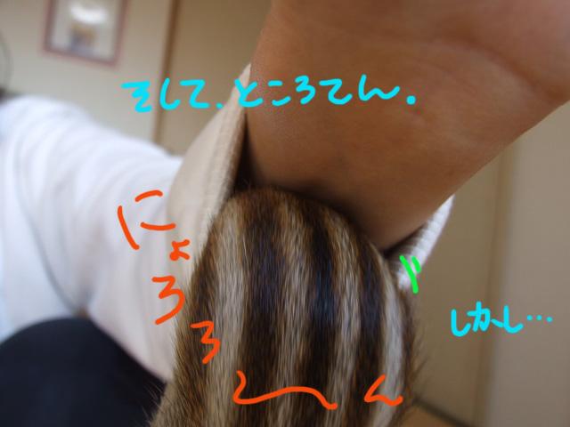 DSCF110310f1099.jpg