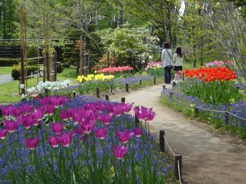 豊平公園1