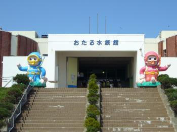 おたる水族館2