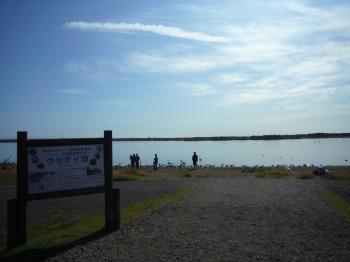 ウトナイ湖0