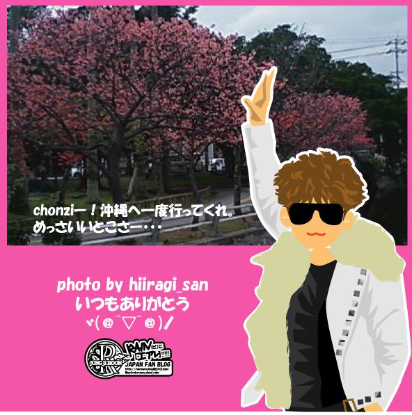 2011hiiragi.jpg