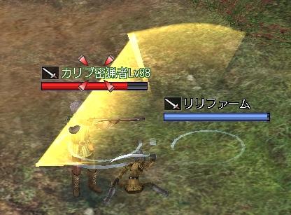 対NPC戦